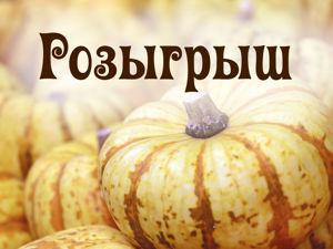 Осенний розыгрыш броши-мороженого среди репостов. Ярмарка Мастеров - ручная работа, handmade.