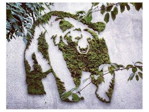 Экологично и красиво! Оригинальные граффити Анны Гарфорт и многое другое. Ярмарка Мастеров - ручная работа, handmade.