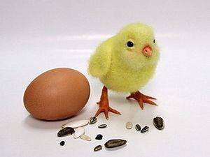 Видео мастер-класс. Пасхальный цыпленок.. Ярмарка Мастеров - ручная работа, handmade.