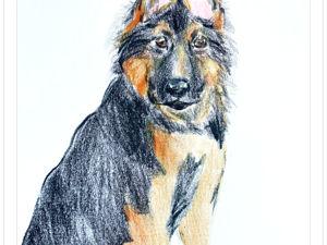 Собаки и карандаши. Ярмарка Мастеров - ручная работа, handmade.