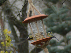 How to Make Simple Bird Feeders. Livemaster - handmade