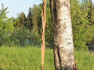 Чудеса природы или необыкновенный посох из можжевельника. Ярмарка Мастеров - ручная работа, handmade.