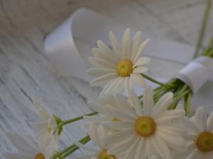 Вместо снега беленькие ромашки. Ярмарка Мастеров - ручная работа, handmade.