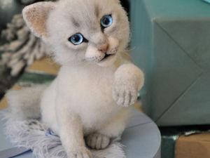 Невский маскарадный котенок. Больше фото + видео. Ярмарка Мастеров - ручная работа, handmade.