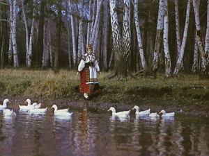Путешествие в прошлое: воронежский народный костюм. Ярмарка Мастеров - ручная работа, handmade.