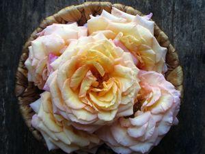 Свежайший гидролат Роза Barock снова в наличии !!!. Ярмарка Мастеров - ручная работа, handmade.