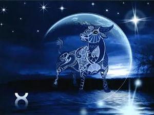 Луна в Тельце. Советы астролога. Ярмарка Мастеров - ручная работа, handmade.