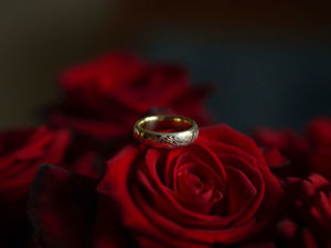 Кольца и розы. Ярмарка Мастеров - ручная работа, handmade.