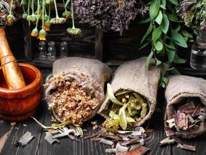 Целебные травы (стишок-запоминалка). Ярмарка Мастеров - ручная работа, handmade.