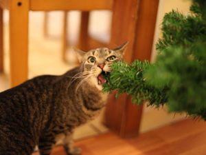 Преступление и наказание: 18 фото того, как коты роняют наши ёлки, а хозяева пытаются предотвратить неизбежное. Ярмарка Мастеров - ручная работа, handmade.