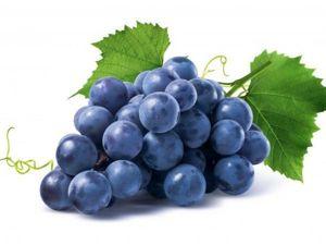 20  фактов о винограде. Ярмарка Мастеров - ручная работа, handmade.