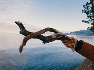 Палочки с берега Байкала на продажу для вашего творчества. Ярмарка Мастеров - ручная работа, handmade.