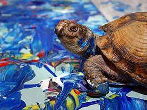 Видеоподборка: самые известные животные-художники. Ярмарка Мастеров - ручная работа, handmade.