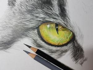 Рисую кота. Ярмарка Мастеров - ручная работа, handmade.