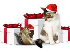 В магазине продолжается акция  «Не все подарки розданы!!!» . На все изделия скидка 35%. Ярмарка Мастеров - ручная работа, handmade.