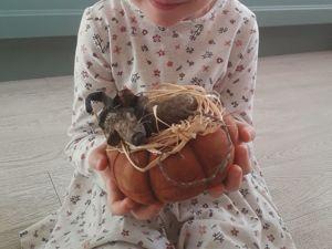 Милый мышонок от магазина Лоры Пинтсон. Ярмарка Мастеров - ручная работа, handmade.