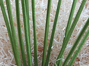 Как же вывернуть тонюсенькую трубочку из ткани за пару минут - Элементарно, Ватсон. Ярмарка Мастеров - ручная работа, handmade.