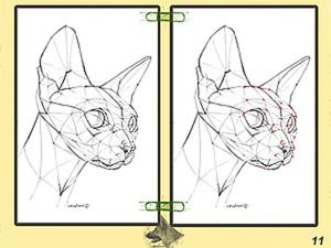 Урок графики: построение головы кошки. Ярмарка Мастеров - ручная работа, handmade.
