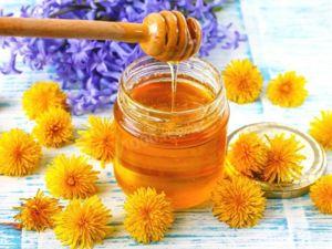 Мед целебный из Одуванчиков .Делаем сами. Ярмарка Мастеров - ручная работа, handmade.