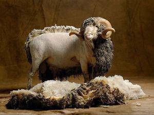 Всё о натуральной шерсти. Ярмарка Мастеров - ручная работа, handmade.
