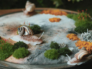 Tiny Forest World: Incredibly Realistic Moss Universes in Embroidery by Lyubov Nikitina. Livemaster - handmade