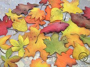 Создаем осенние листочки из фоамирана: часть 1. Ярмарка Мастеров - ручная работа, handmade.