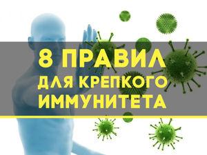 8 правил для крепкого иммунитета. Ярмарка Мастеров - ручная работа, handmade.