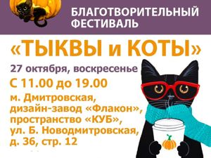 Наш магазинчик участвует в благотворительном фестивале «Тыквы и коты». Ярмарка Мастеров - ручная работа, handmade.