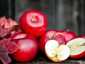 О яблоках с интересом. Ярмарка Мастеров - ручная работа, handmade.