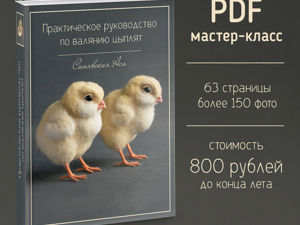 Три дня до окончания акции! Летняя цена на мастер-класс по цыплятам. Ярмарка Мастеров - ручная работа, handmade.