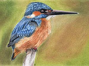 Рисуем сами зимородка. Ярмарка Мастеров - ручная работа, handmade.