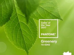 Greenery — главный цвет лета 2017. Ярмарка Мастеров - ручная работа, handmade.