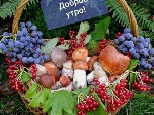 Доброй и красивой вам Осени , друзья !. Ярмарка Мастеров - ручная работа, handmade.