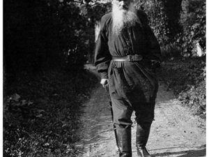 «Валялся. Падал духом. Злился — ударил кошку»  Лев Толстой. Ярмарка Мастеров - ручная работа, handmade.