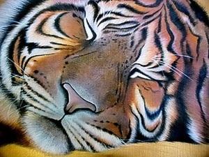 Изображение спящего тигра на подушке.. Ярмарка Мастеров - ручная работа, handmade.