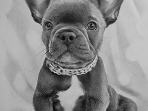 Рисую собаку простыми карандашами. Ярмарка Мастеров - ручная работа, handmade.