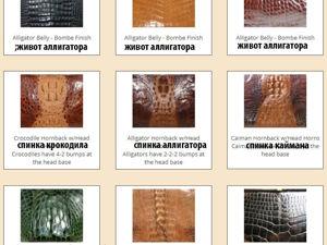 Памятка по определению кожи крокодила и аллигатора. Ярмарка Мастеров - ручная работа, handmade.