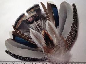 Микс перьев  «БРИГ» в новой комплектации  — 16 шт. Ярмарка Мастеров - ручная работа, handmade.