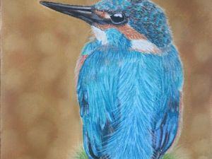 Рисуем пастелью сидящего на веточке зимородка. Ярмарка Мастеров - ручная работа, handmade.