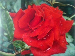 Красная роза — эмблема любви. Ярмарка Мастеров - ручная работа, handmade.