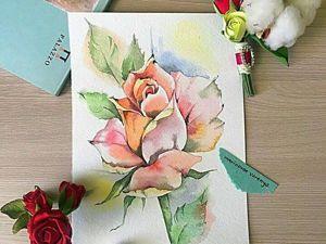 Рисуем  акварелью нежную розу. Ярмарка Мастеров - ручная работа, handmade.
