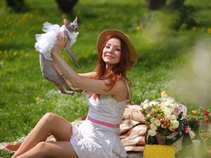 Поши эксклюзивной одежды для кошек и собак. Ярмарка Мастеров - ручная работа, handmade.