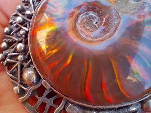 Аммониты или головоногий моллюск. Ярмарка Мастеров - ручная работа, handmade.