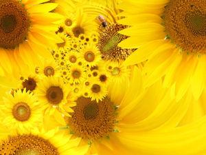 Закрыт! Аукцион  «Оттенки Желтого». Ярмарка Мастеров - ручная работа, handmade.