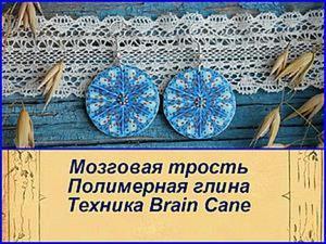 Видеоурок: осваиваем технику «Brain Cane», или «Мозговая трость» из полимерной глины. Ярмарка Мастеров - ручная работа, handmade.