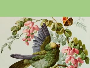 Birds. Ярмарка Мастеров - ручная работа, handmade.