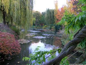 Великий садовник Клод Моне. Ярмарка Мастеров - ручная работа, handmade.