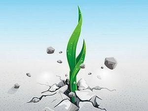 Преграды на пути творческого роста и способы их преодоления. Ярмарка Мастеров - ручная работа, handmade.