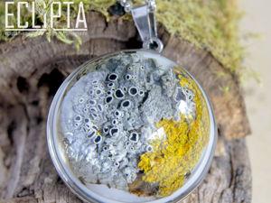 ВИДЕО. Lichen. Кулон-полусфера унисекс 30 мм с лишайниками эпоксидная смола. Ярмарка Мастеров - ручная работа, handmade.