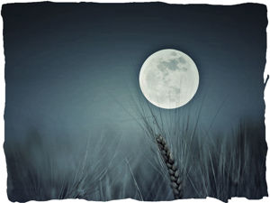 Урожайная Луна: полнолуние 13 сентября. Ярмарка Мастеров - ручная работа, handmade.